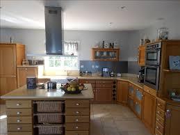 cuisine centrale albi vente de prestige maison villa 8 pièce s à albi 233 m avec 5