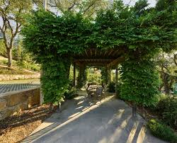 Plants For Pergola by Turn Your Backyard Into Inviting Spot Just With These Pergola