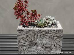 diy succulents in homemade faux bois and concrete pots concrete