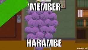 Pepperidge Farm Meme Maker - member berries know your meme