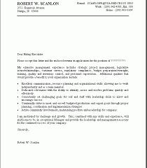Mckinsey Resume Download Example Resume Cover Letter Haadyaooverbayresort Com