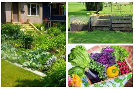 compost your way to a better garden story matters toledo lucas