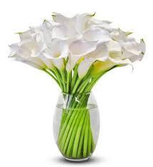 calla lilies bouquet calla lilies avas flowers