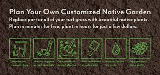 free native plants dave jelen graphic design