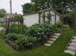 Vegetable Garden Landscaping Ideas Horibble Terrace Home Garden Landscaping Ideas For Vegetable