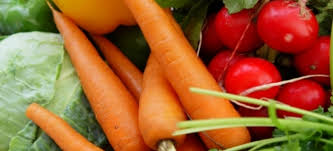 four cool weather crops for your vegetable garden doityourself com