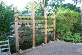 Landscaping Ideas For Privacy Garden Fencing Ideas Privacy Home Outdoor Decoration
