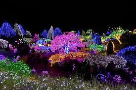 garden of lights hours the garden of morning calm 아침고요수목원 lighting festival i