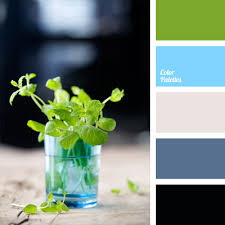 cool colors color palette ideas