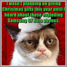 Grumpy Cat Memes Christmas - lolcats christmas lol at funny cat memes funny cat pictures