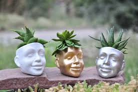 face planters buy mini pot for the cactus face of concrete creative pots in the