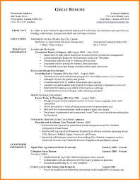 Example Of Proper Resume by 8 A Proper Resume Example Cashier Resumes