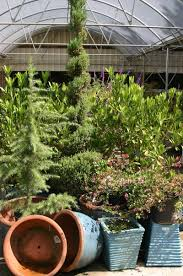 Garden Supplies Buy Landscape U0026 Garden Supplies Raleigh Nc Norwood Road Garden