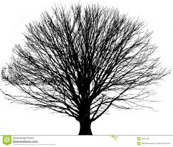 black tree background royalty free stock image image 4795136