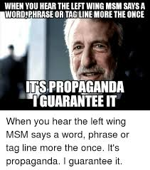 25 best memes about msm left wing memes wing free memes