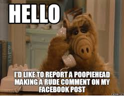 Facebook Comment Memes - hello idlik to report a poopiehead making a comment on my facebook