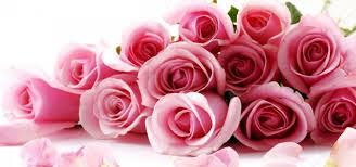 wedding flowers png wholesale premium roses for your wedding whole blossoms
