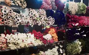 whole sale flowers g page wholesale flowers