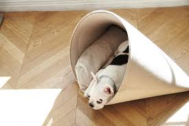 Doggie Beds Modern Dog Beds And Accessories From Howlpot Dog Milk
