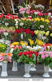 fresh cut flowers fresh cut flowers stock images royalty free images vectors
