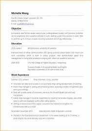 Resume Templates For Experienced Professionals Resume Examples For First Job Sample First Job Resume Experience