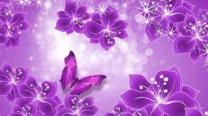 purple butterfly background purple butterfly hd desktop