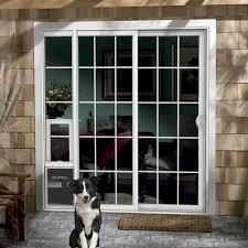 backyards ways install pet door dog step sliding glass with