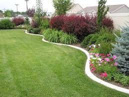 best 25 back yard landscape ideas ideas on pinterest flower bed
