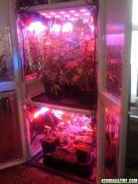 grow cabinets full auto grow cabinets source cabinet growing