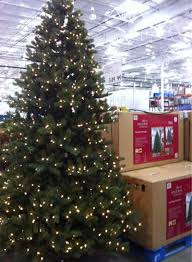 decoration 9ft pre lit tree costco prices within 9ft