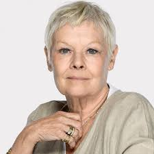 how to get judi dench hairstyle judi dench hairstyle layered hairstyles