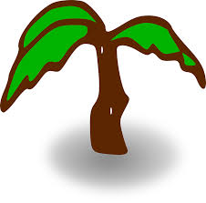 palm tree green brown leaves png image pictures picpng
