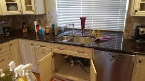 san francisco kitchen cabinets mold found in kitchen cabinets noe valley san francisco mold under