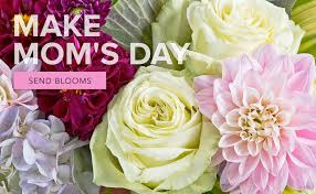 san diego flowers san diego florist flower delivery by timeless blossoms