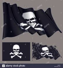 Define Flag Vector Illustration Of The Waving Pirate Flag Skull And