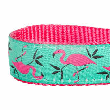 pink flamingo on light emerald dog collar collars dog collars