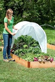 Winter Gardening Ideas Vegetable Gardening Southern California Fall Best Winter Vegetable