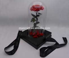 preserved fresh roses in glass dome buy real natural preserved