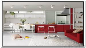 Kitchen Cabinet Doors Replacement Kitchen Cabinet Replacement Shelves 114 Trendy Interior Or Kitchen