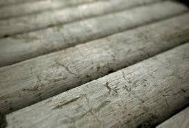 gonzalo de francisco wood log wall texture