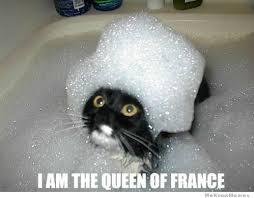 Bubble Bath Meme - bubble bath cat weknowmemes