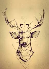 the 25 best deer head tattoo ideas on pinterest elk tattoo
