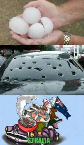 Australia Meme - meanwhile in australia www meme lol com funny gifs pinterest