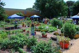 install edible gardens habitat network