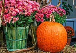 do something more fall festivals halloween events taking place