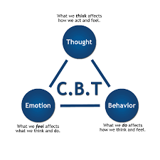 100 brief cbt manual for criminals civility therapy
