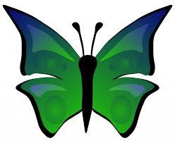 butterfly clipart 12 68 butterfly clipart clipart fans