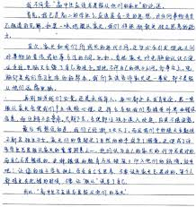 Argumentative Essay Introduction Example Essay Examples For Middle