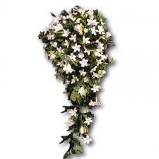 stephanotis flower diy stephanotis flower bouquet boutonniere wholesale prices