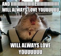 Meme About Love - romantic love memes for girlfriend and boyfriend love memes